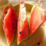 大玉スイカ栽培して、いつまでも大きくならない原因がわかった。
