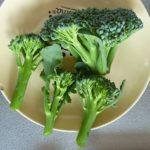 茎ブロッコリー(スティックセニョール)は実に簡単に栽培できた、味はアスパラ風なの?