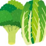 この差って何【新鮮で美味しいのはどっち?白菜&ブロッコリー】名産地の農家の教えは?